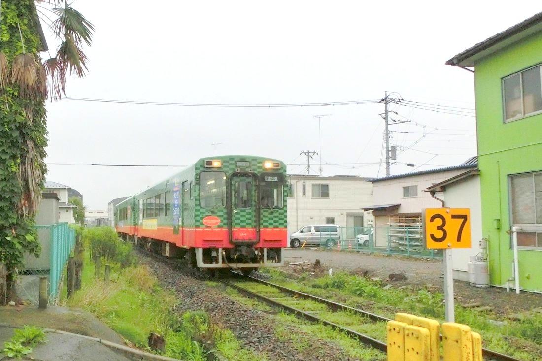 CIMG6359.jpg
