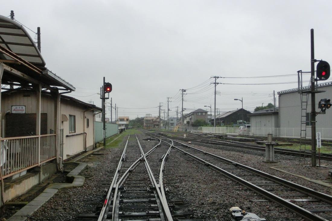 CIMG6514.jpg