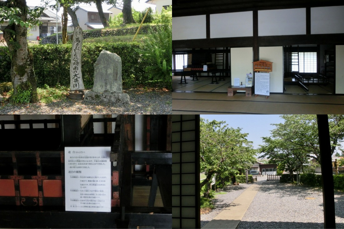 shimada3.jpg