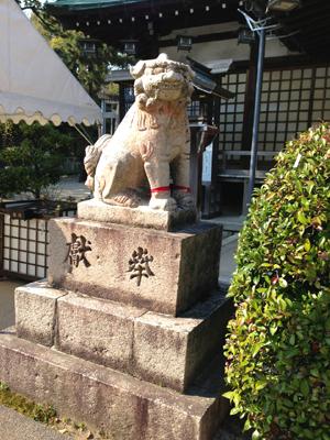 狛犬さんの足2