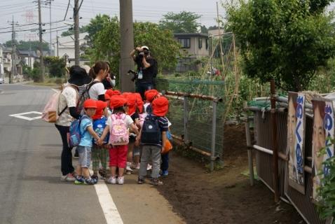 2014-05-14 26年度年中遠足5月14日上座総合公園 066 (800x536)