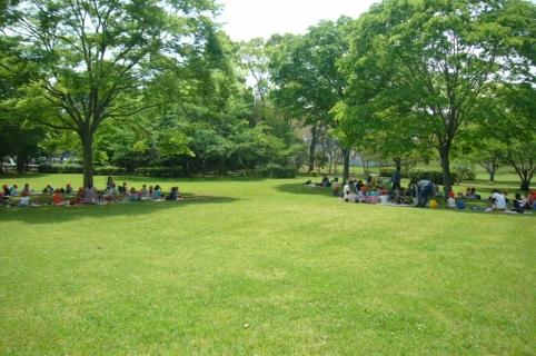 2014-05-14 26年度5月14日年中遠足上座総合公園 034 (800x531)