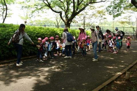 2014-05-16 26年度年少遠足四街道総合公園5月16日 019 (800x536)