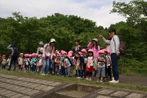 2014-05-16 26年度年少遠足四街道総合公園5月16日 025 (800x536) (2)