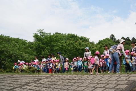 2014-05-16 26年度年少遠足四街道総合公園5月16日 028 (800x536)