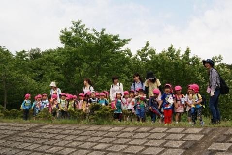 2014-05-16 26年度年少遠足四街道総合公園5月16日 031 (800x536)