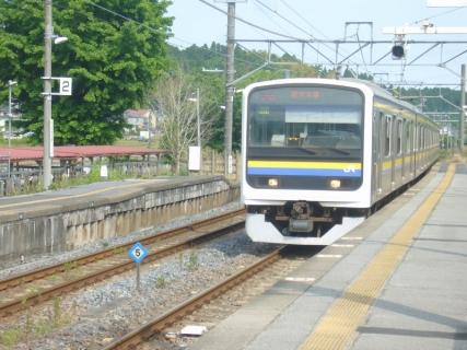 P1080543 (800x600)