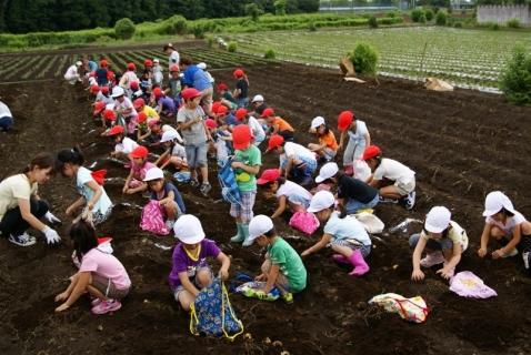 2014-06-27 平成26年度6月27日ジャガイモ掘り・ 066 (800x536)
