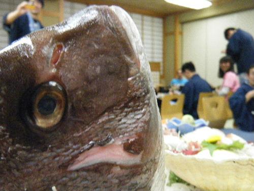 2013_0210いわきサンシャイン0063