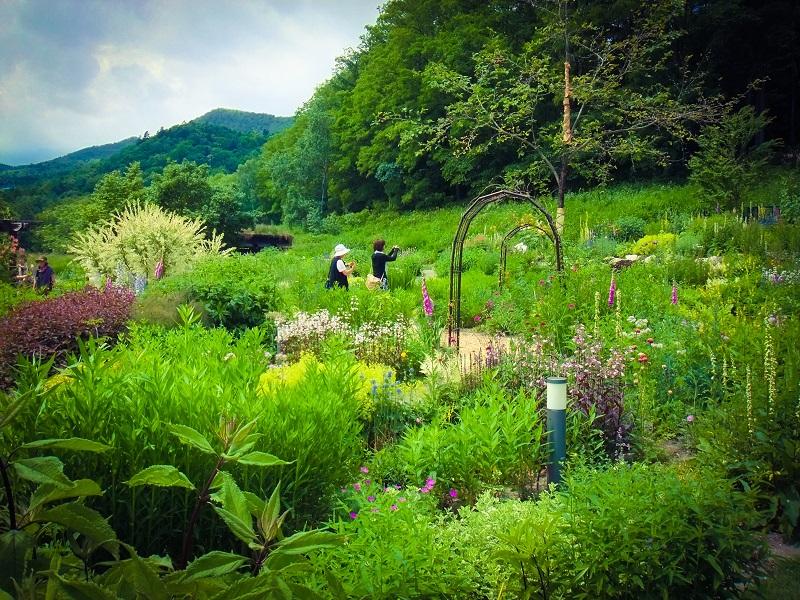 kazeno_garden_04.jpg