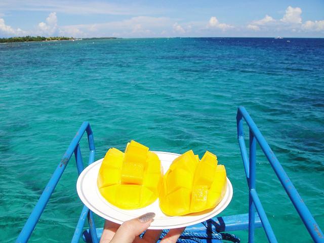 セブのマンゴ