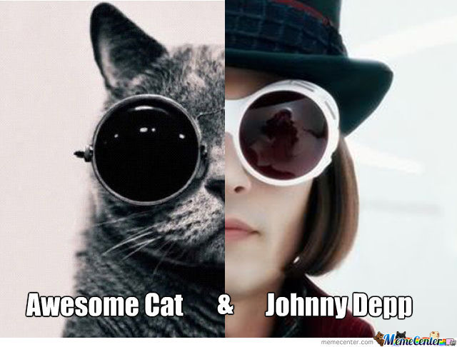 awesome-cat-johnny-depp-in-charlie-and-the-chocolate-factory_o_1083516.jpg