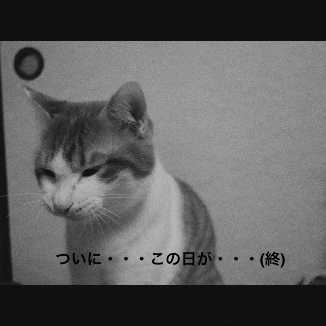20140216213219ece.jpg