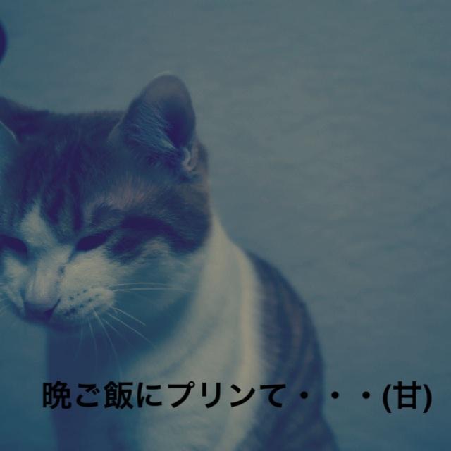 2014031200241820a.jpg