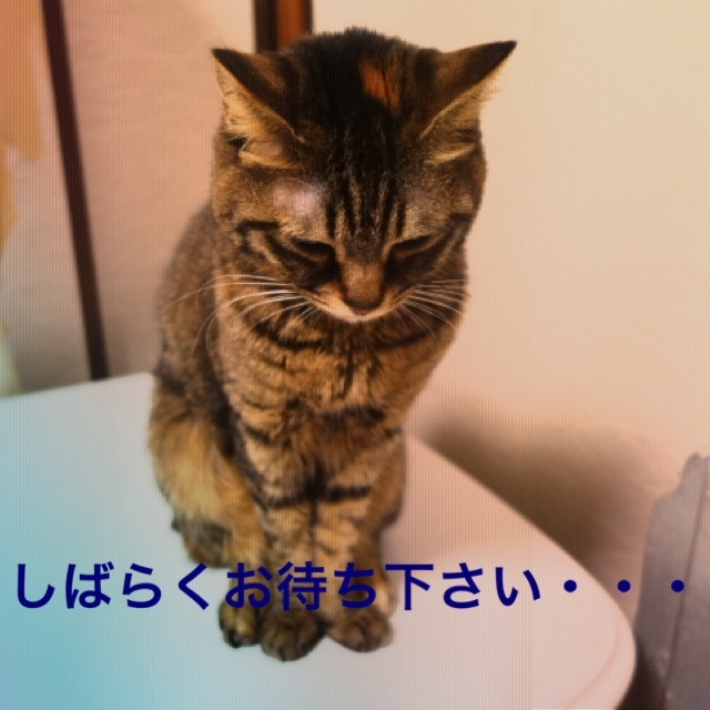 20140313201949fe5.jpg
