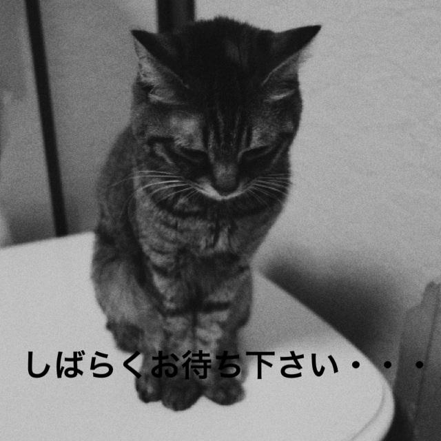 20140411235203ffe.jpg