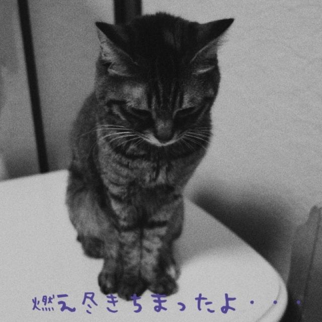 20140630212937ec4.jpg