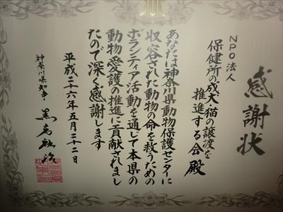 2014-7-1001.jpg