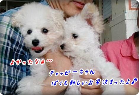 0607花梨っ子2