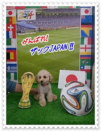 0614ワールドカップ