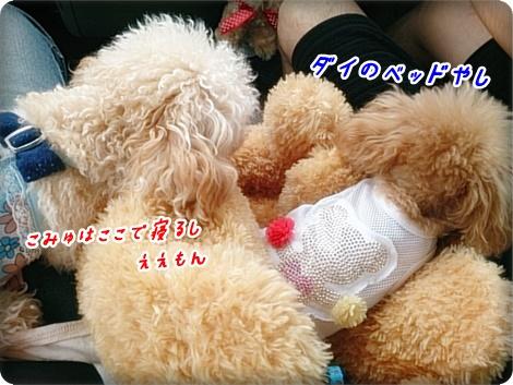 0722ダイク&こみゅ