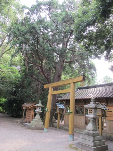竹神社 019