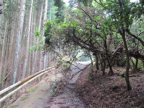 阿山の里 002