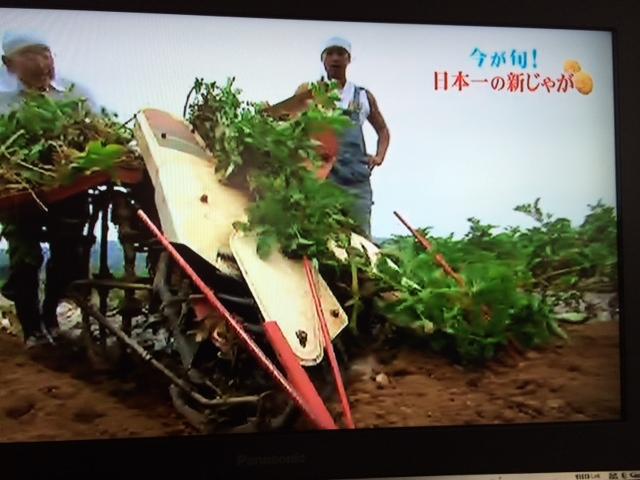 小浜ジャガイモ3