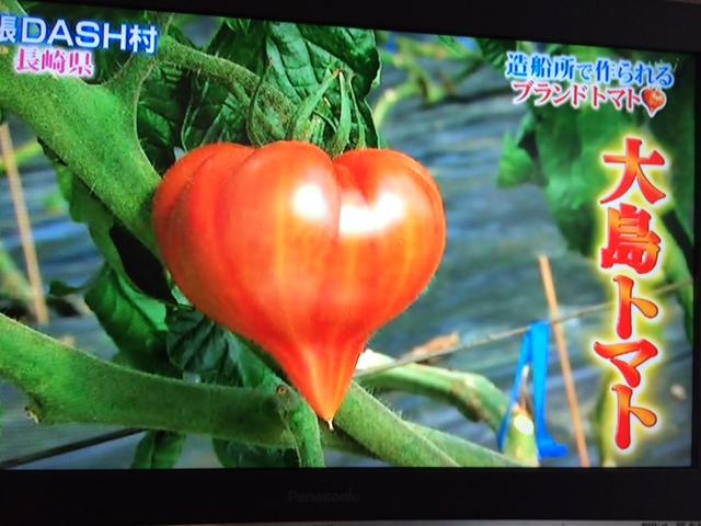 大島トマト3