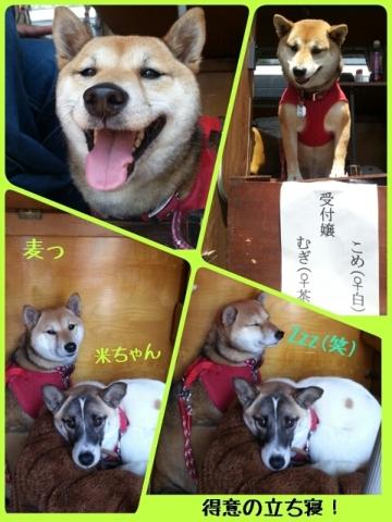 幸せなのだ♪ (3)