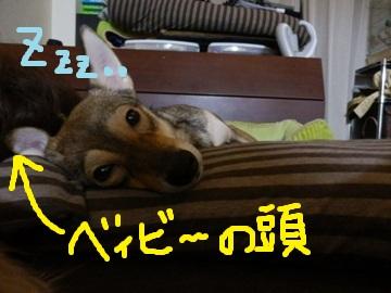 坊やと夏休み♪ (2)