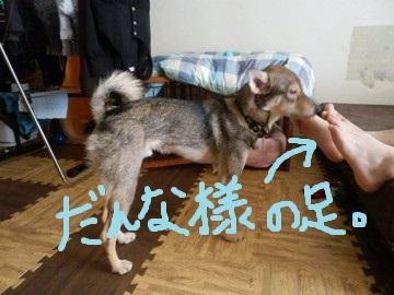 坊やとの暮らし (7)