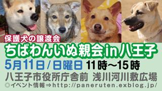 hachiohji11_320x180.jpg