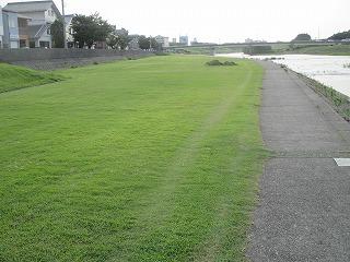 IMG_1632散歩