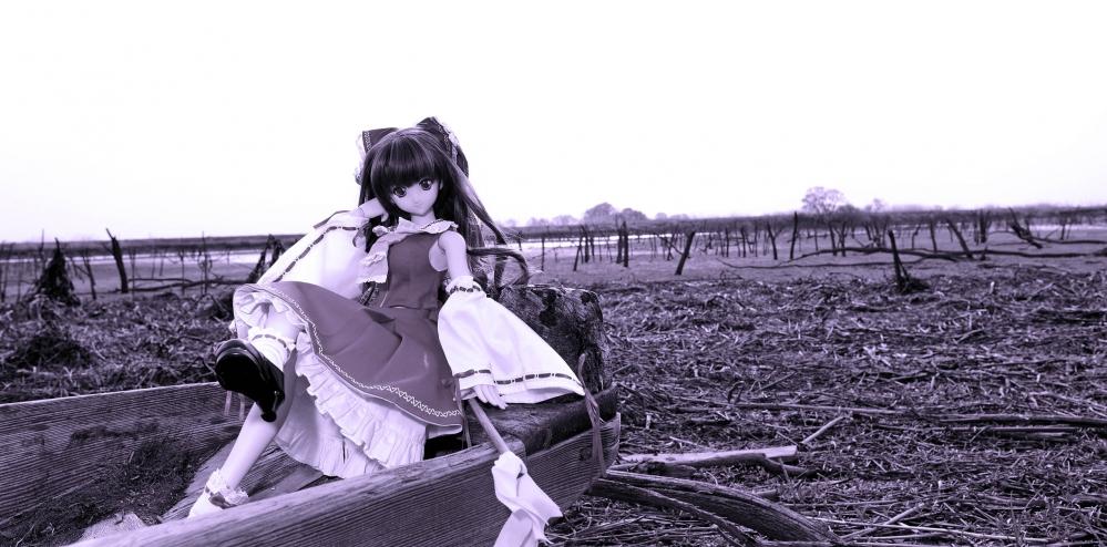 DSC_6293_01改