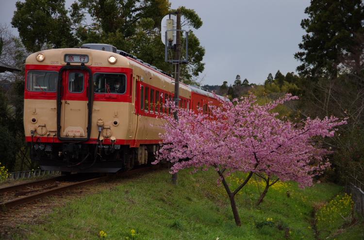 2014年03月21日 いすみ鉄道 021