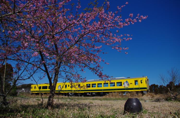2014年03月21日 いすみ鉄道 009