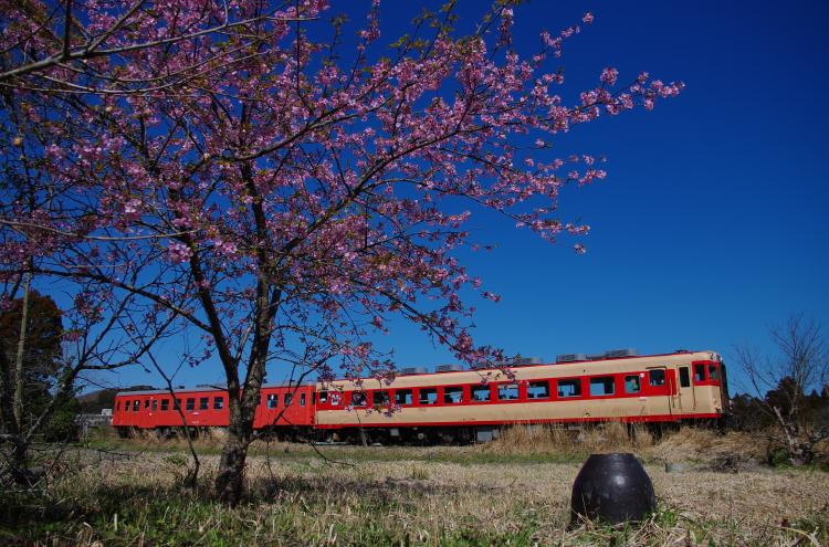 2014年03月21日 いすみ鉄道 010