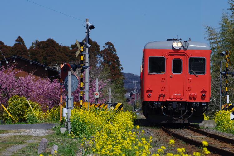 2014年03月21日 いすみ鉄道 6018