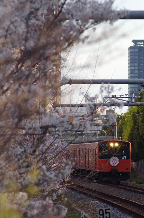 2014年04月03,04日 関西遠征 013