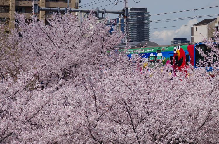 2014年04月03,04日 関西遠征 097