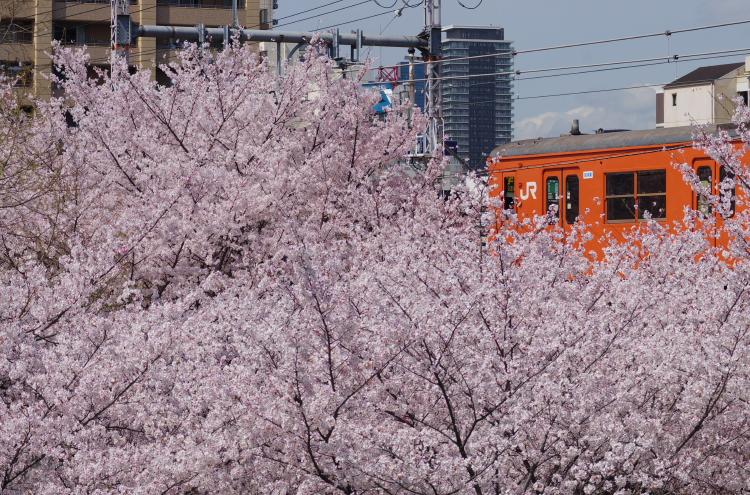 2014年04月03,04日 関西遠征 093