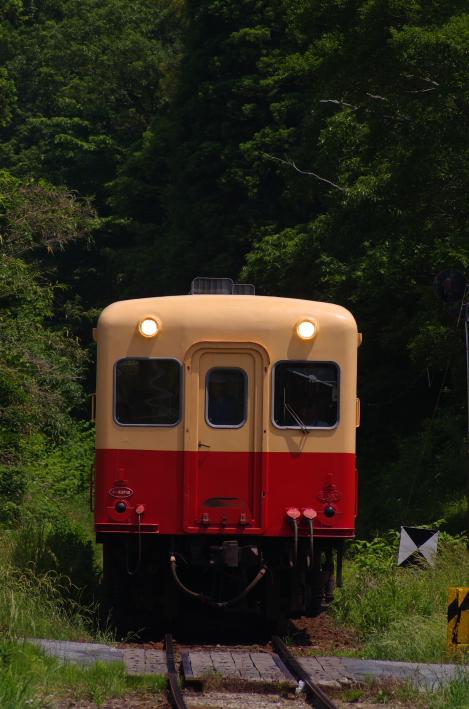 2014年06月01日 いすみ 小湊 008