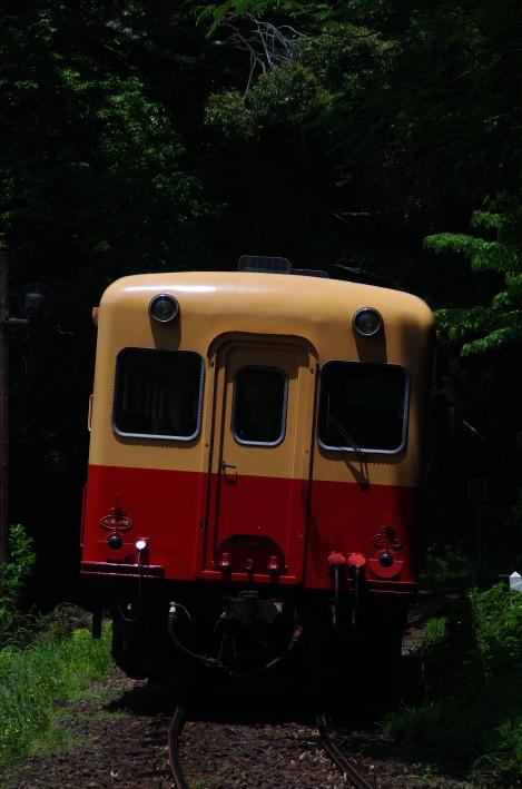 2014年06月01日 いすみ 小湊 043