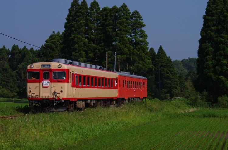 2014年06月01日 いすみ 小湊 075