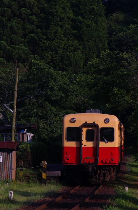 2014年06月01日 いすみ 小湊 083