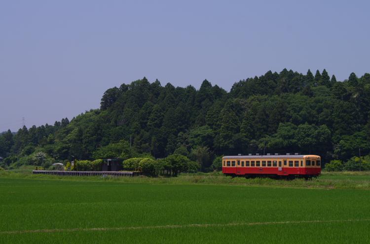 2014年06月01日 いすみ 小湊 090