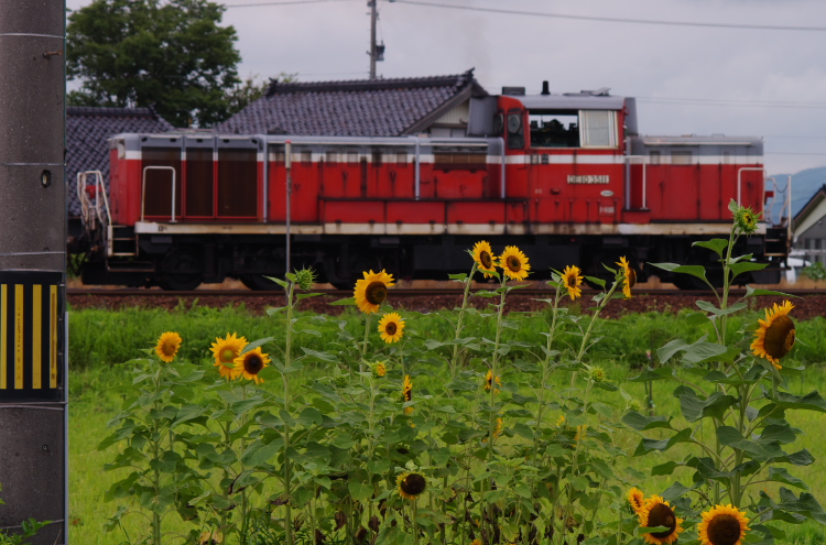 2014年07月13,14日 高岡遠征 087