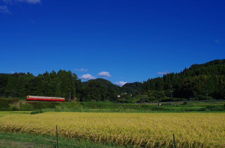2014年08月19日 京葉線 小湊 041