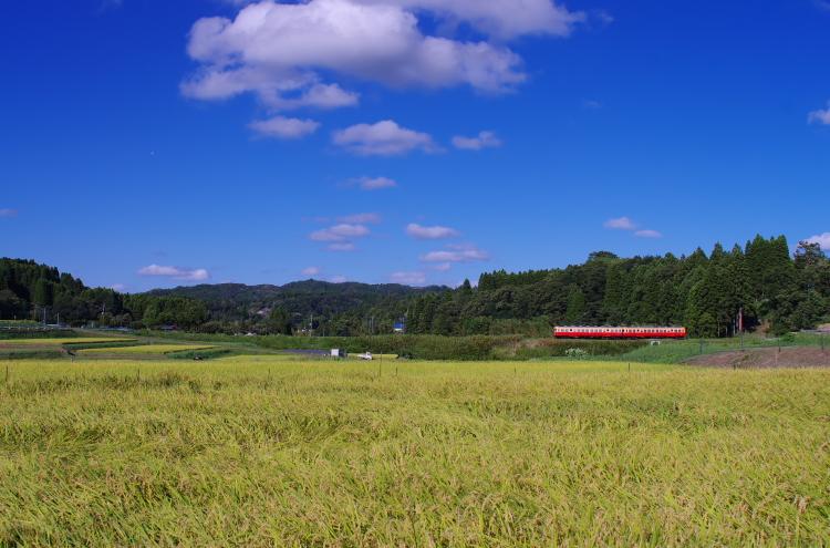 2014年08月19日 京葉線 小湊 083